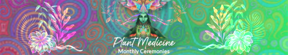 plant medicine, plant medicine ceremony, shamanic healing, shamanic weekend retreats, psychedelic mushrooms, psilocybin mushrooms, magic mushroom, Shrooms,