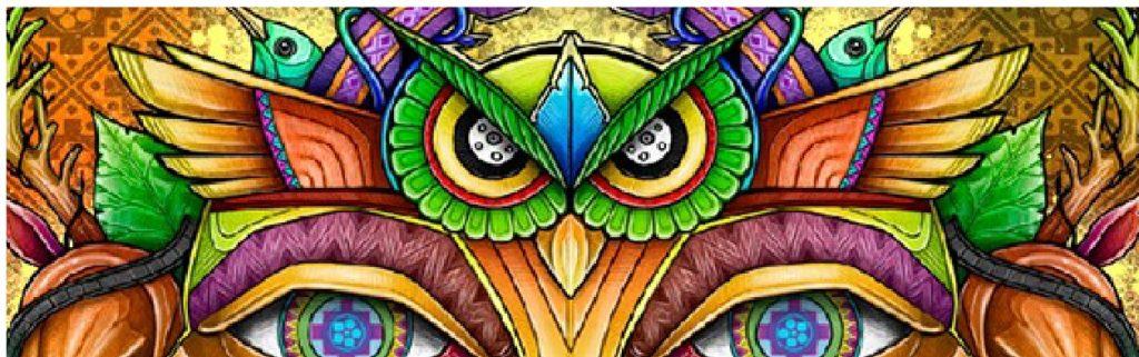 plant medicine, plant medicine ceremony, shamanic healing, shamanic weekend retreats, psychedelic mushrooms, psilocybin mushrooms, magic mushroom, Shrooms, Kambo, Kambo treatment, Kambo ceremony, kambo Houston, Kambo Texas, Plant medicine, Shamanic Healing, Shamanic Weekend retreat,