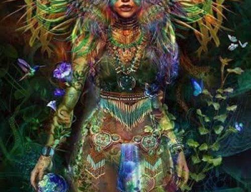 Psilocybin Ceremony-Shamanic Visions